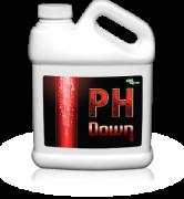 prod_lrg_ph_down