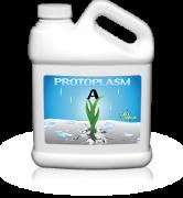prod_lrg_protoplasm_a